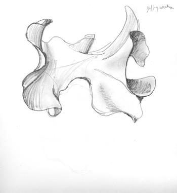 Hyperbolic2